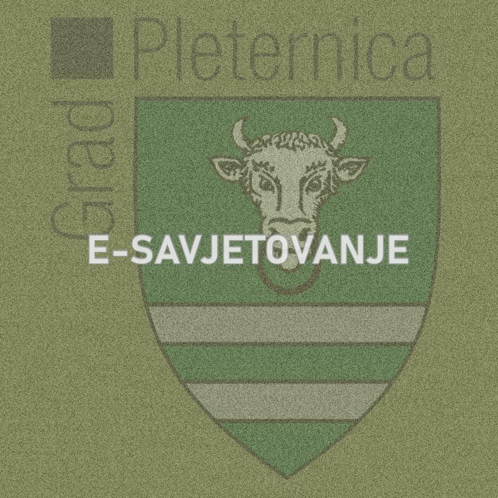 II. Rebalans Proračuna Grada Pleternice za 2020. godinu